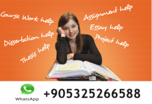 turkish students assignment help service